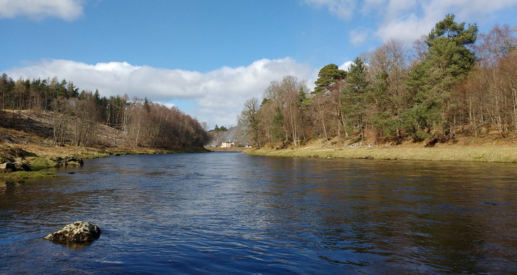 Commonty on the River Dee