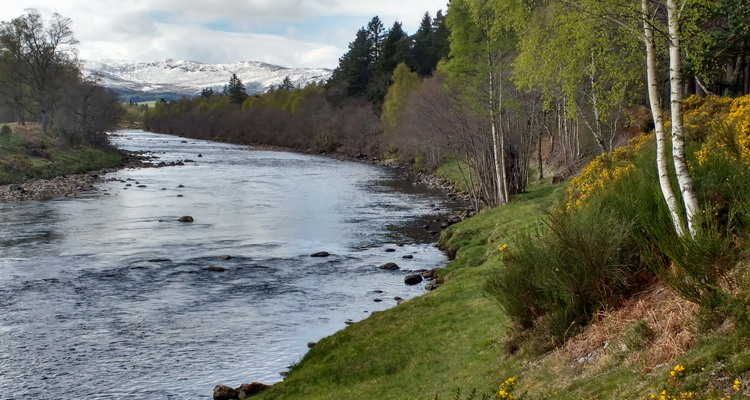 Mountain view from the River Dee